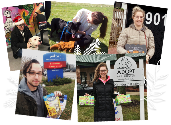 collage of mx employees donating supplies and posing with rescued animals