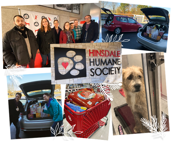 collage of individuals donating food and supplies to dog humane society